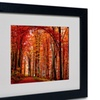 Philippe Sainte-Laudy 'The Red Way' Matted Black Framed Art