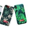 New Fashion Supreme Leaf Series Slim Case for iPhone 6/6S/7/8/X & Plus
