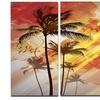 Palm Tree at Sunset - Photography Glossy Aluminium Art artwork