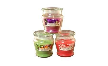 8 oz. Scented Candles ff5be09a-dfbf-4315-9bbf-70e4fc64dc9c