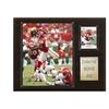 "NFL 12""x15"" Dwayne Bowe Kansas City Chiefs Player Plaque"