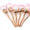 6pcs Rose Cosmetic Brush Beauty Kit Professional Makeup Brushes Gift