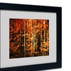 Philippe Sainte-Laudy 'Still Painting' Matted Black Framed Art