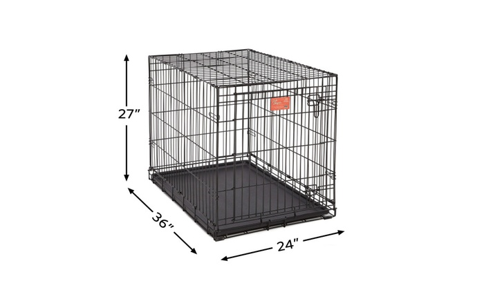 Midwest 36 Life Stages Single Door Dog Crate Groupon