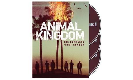 Animal Kingdom: The Complete First Season (DVD or Blu-ray) eb52c33d-bd4c-44df-b8d5-b6068c221b5a