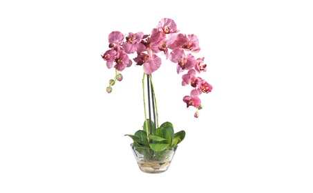 Nearly Natural Phalaenopsis with Glass Vase Silk Flower Arrangement f2a20d8b-00f5-4c96-9951-afba3dfa1b86