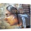 Indian Woman with Headdress Portrait Metal Wall Art 28x12