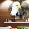 Eagle Head with Textures' Animal Circle Metal Wall Art