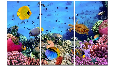 Coral Colony and Coral Fishes - Seascape Photo Metal Wall Art