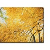 Ariane Moshayedi 'Yellow Foliage' Canvas Art