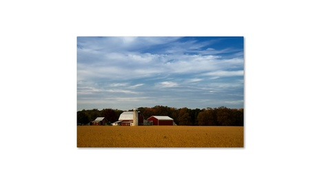 PIPA Fine Art 'Red Barn in Golden Field' Canvas Art e787016a-3853-4da0-b6c7-93a3e8699959