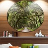 Live Oak Tunnel' Disc Photography Circle Metal Wall Art