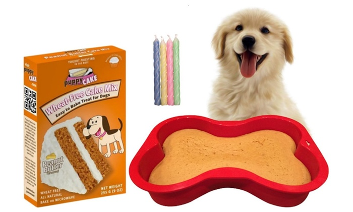Dog Birthday Cake Kit Puppy Wheat Free 7 Inch By 10