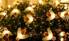 SolarEK Honey Bee 30-LED Solar String Lights with Ground Stake (1- or 2-Pack)