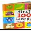 First 100 Words (Bright Baby) Board book – July 28, 2005