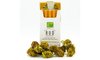 Lifted Living Bud HempCigs - 1200mg - Pack of 10