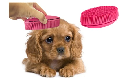 Hair Removal Pet Grooming Lint Brush for Pets for Couches and Clothing