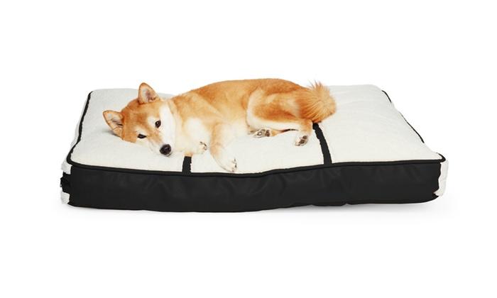 Livingsocial Dog Bed