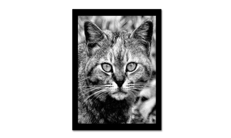 Patty Tuggle 'Black & White Pretty Kitty' Canvas Art 16ae9e05-7d2c-46f2-9c90-e80295253ed4