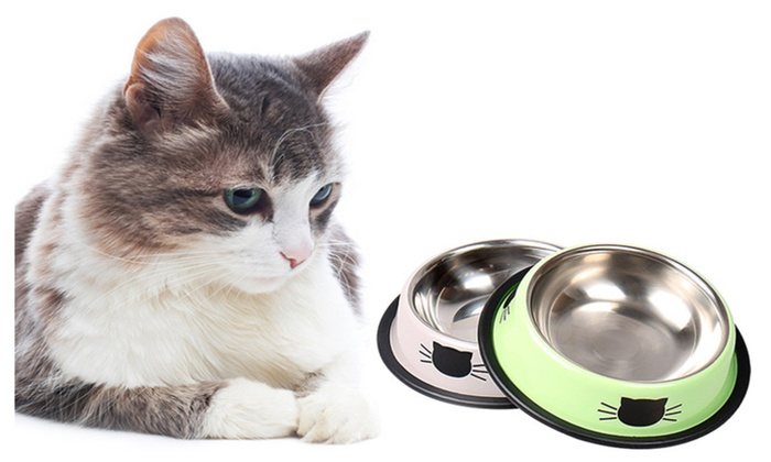 Up To 68 Off On Cat Dog Food Bowl Stainless S Groupon Goods