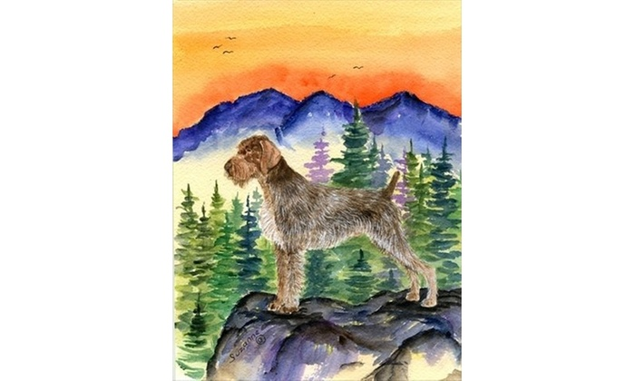 Carolines Treasures SS8226CHF German Wirehaired Pointer Canvas Flag - House  Size