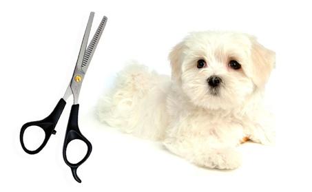 Superior Pet Grooming Thinning Scissors Dog Quality Hair Cut cc722a0b-c949-41b9-8c1b-4161e2cdb1c5
