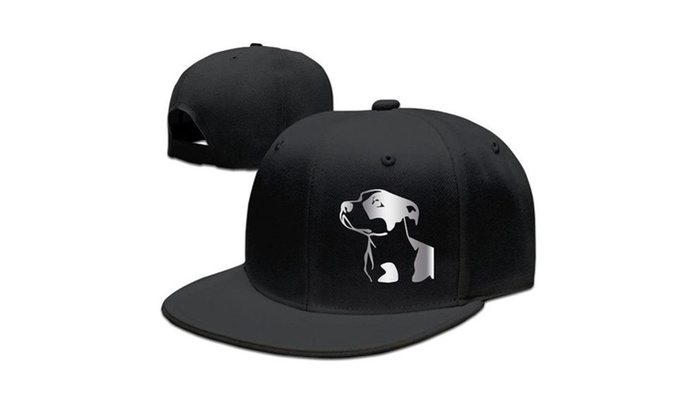 81c01340c46fb Pitbull Platinum Style Baseball Snapback Cap