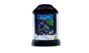 "BioBubble Aqua Terra 3D Coral Background 1 Gallon 7.5"" x 7.5"" x 10"""