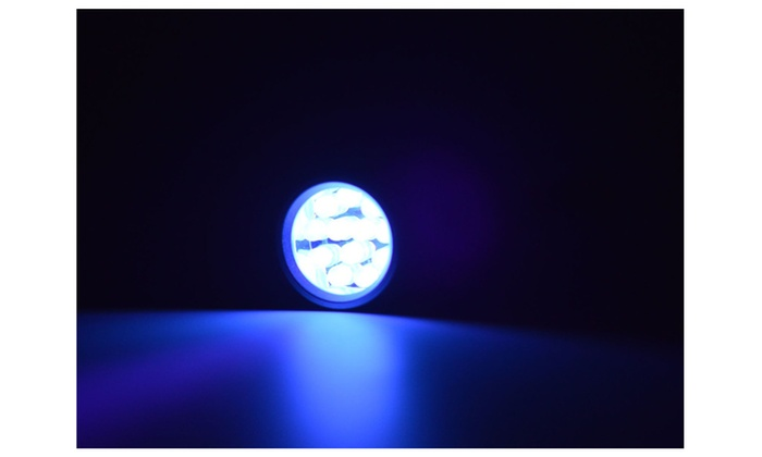 Pet Urine & Identification Detector UV Flashlight