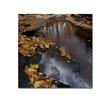Kurt Shaffer Lakeview Autumn Waterfall 2 Canvas Print