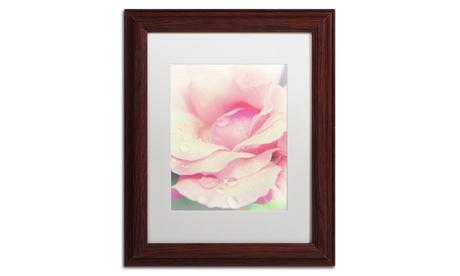 PIPA Fine Art 'Softened Rose' Matted Wood Framed Art 7990a1f3-db34-4066-b61e-a01cc044557f