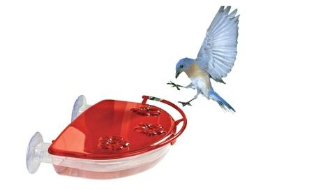 8 oz. Capacity Window Hummingbird Feeder with 3 Feeding Ports (Goods For The Home Patio & Garden Bird Feeders & Food) photo