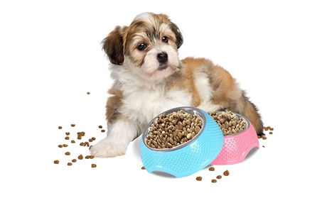 Top Quality Stainless Steel Pet Bowl Set (Blue and Pink) - Pack of 2 801e7bcc-5c1c-49cb-9814-de6432482d7a