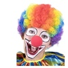 Halloween Accessories - Clown Rainbow Wig