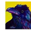 Pat Saunders-White Corvus Canvas Print