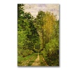 Claude Monet 'Wooded Path 1865' Canvas Art