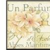 Fleurs and Parfum III by Daphne Brissonnet