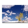 Philippe Sainte Laudy Clouds and Loneliness Canvas Print