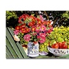 David Lloyd Glover Apples and Flowers Canvas Print