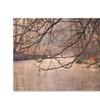 Philippe Sainte-Laudy Skylight Canvas Print