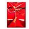 Roderick Stevens Red Wrap Canvas Print