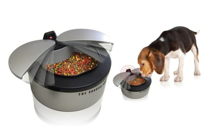 Automatic Motion Sensor Pet Dish