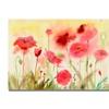 Shelia Golden Poppy Field Canvas Print