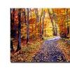 David Lloyd Glover Leaf Covered Road Canvas Print