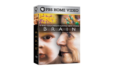 The Secret Life of the Brain 3PK DVD 4ece532b-480f-4101-b303-a1aa804661aa