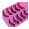 Temporary False Eyelashes (5-Pair)