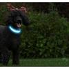 Adjustable Glowing LED Dog Collar