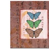 Miguel Paredes 'Butterflies I' Canvas Art