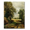 John Constable The Cornfield Canvas Print
