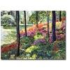 David Lloyd Glover Azalea Forest Grove Canvas Print